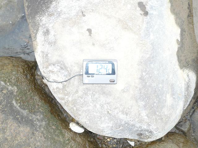 20161101冬季水温P1010407
