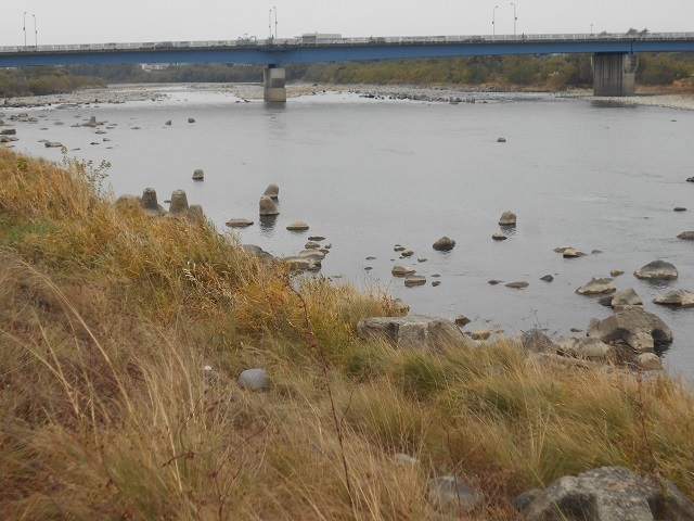 DSCN14241114大渡橋左岸.jpg