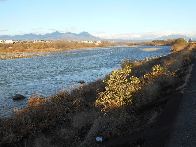 DSCN15671205大渡橋左岸上流