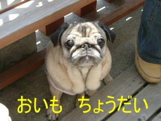 2006_0505monayaki0006b_2016122821003274c.jpg