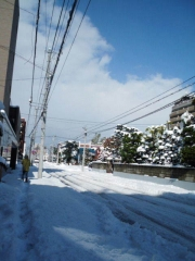 2016_1106yukiy0023.jpg