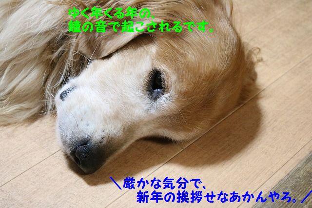 IMG_1407.jpg