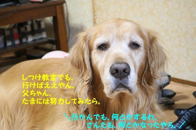 IMG_7707.jpg