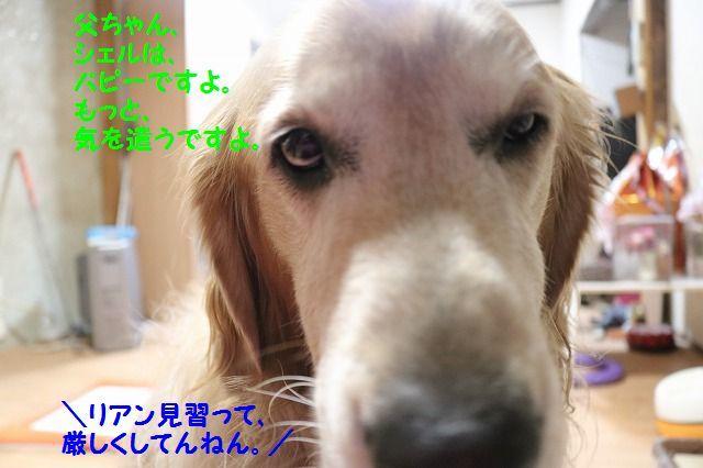 IMG_8007.jpg