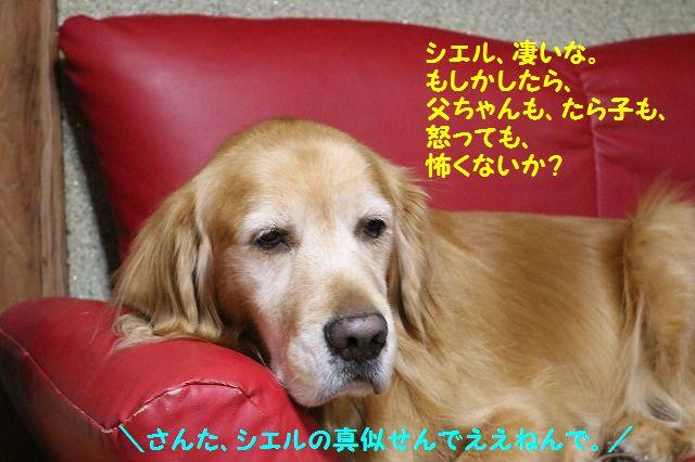 IMG_9001.jpg