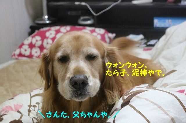 IMG_9825.jpg