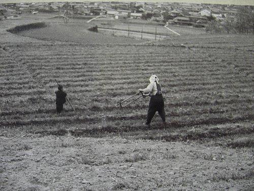 畑モノクロ