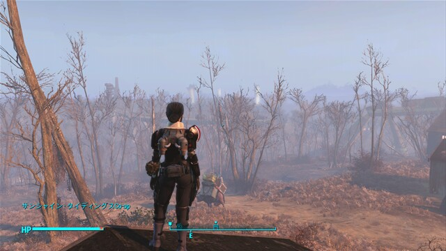 Fo4ms11