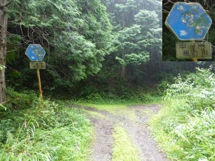 愛媛県道9号線06