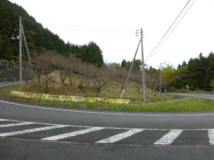 三坂峠29
