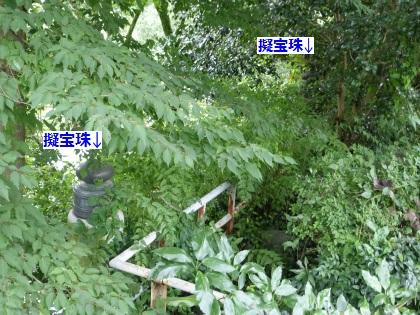 御岳橋06