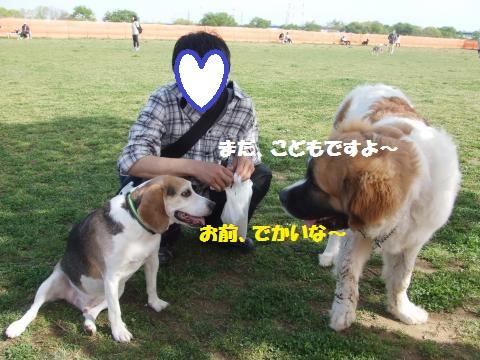 009_convert_20160420033628.jpg