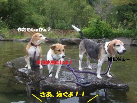 038_convert_20160907033553.jpg