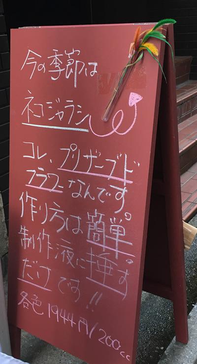 ネコジャラシを立て看で宣伝〜
