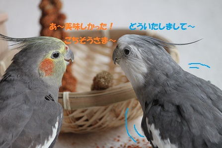 おいしー!!