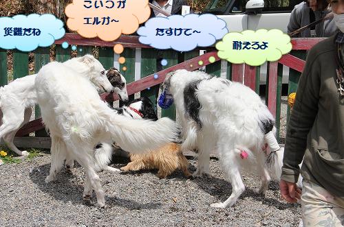 2016.4.23~24 オーキャン宝島 001
