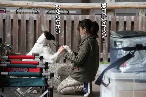 2016.4.23~24 オーキャン宝島 056