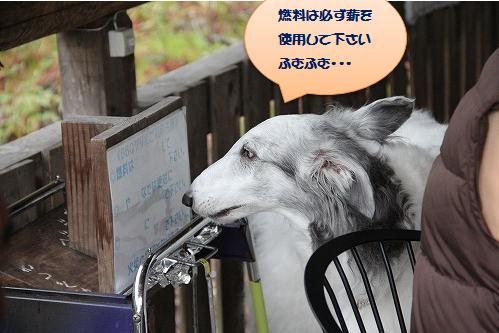 2016.4.23~24 オーキャン宝島 177