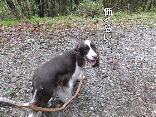 2016.4.23~24 オーキャン宝島 014