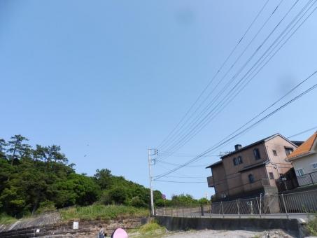 P1170850.jpg