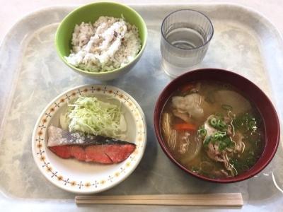 161027オアシス豚汁定食350円