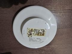DSCN6095.jpg