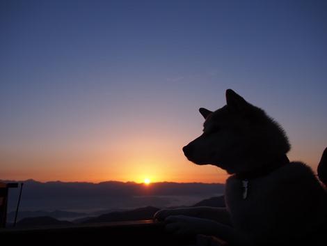 日の出~♪