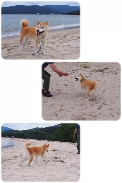 砂浜にて♪