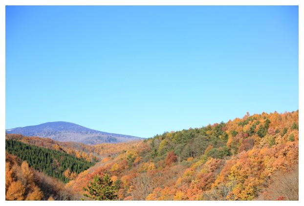 2016-11-26-03.jpg
