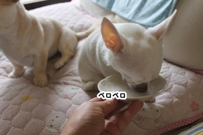 DNxoktTtX7FnigG1475456481_1475456490.jpg