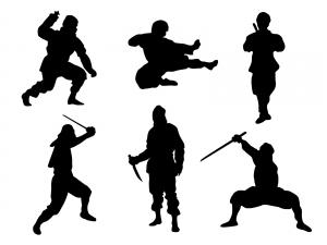 The Ninja!