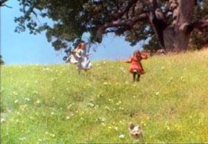 160426白詰草と榎の丘3