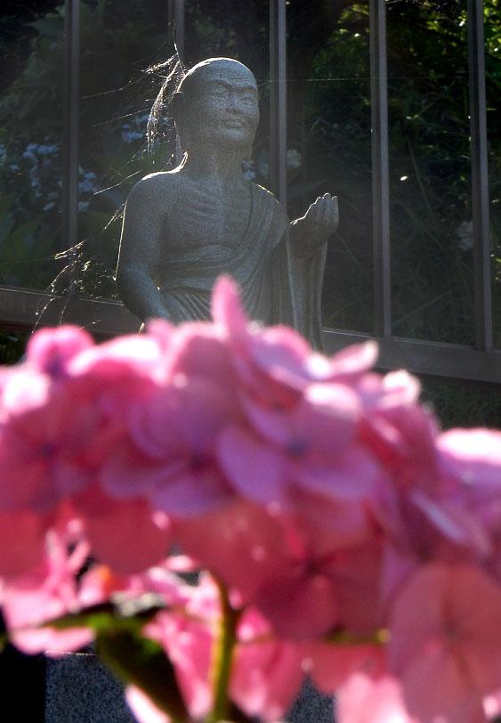 160618仏像とあじさい@妙音寺11