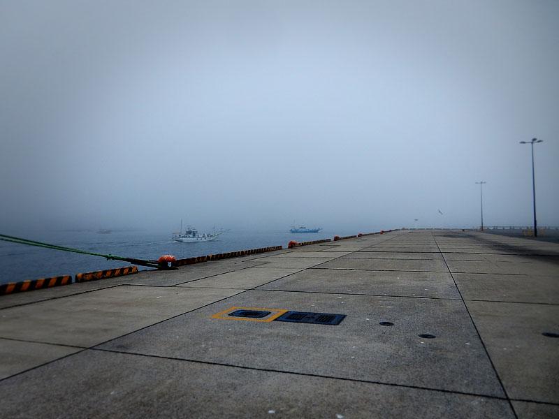 160702濃霧@久里浜港3