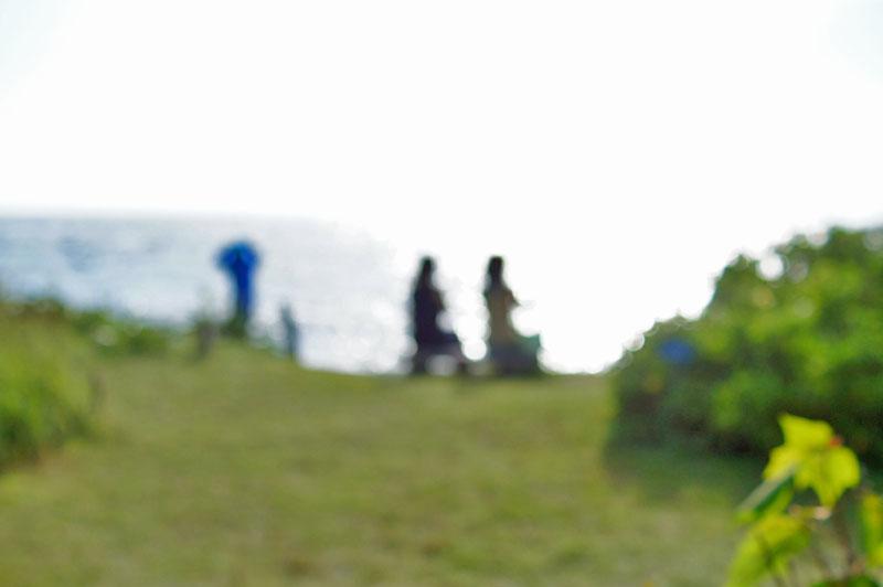 160703天神島のスカシユリ4