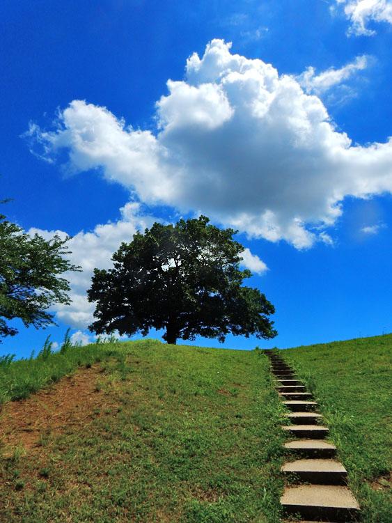 160729榎の丘の夏1