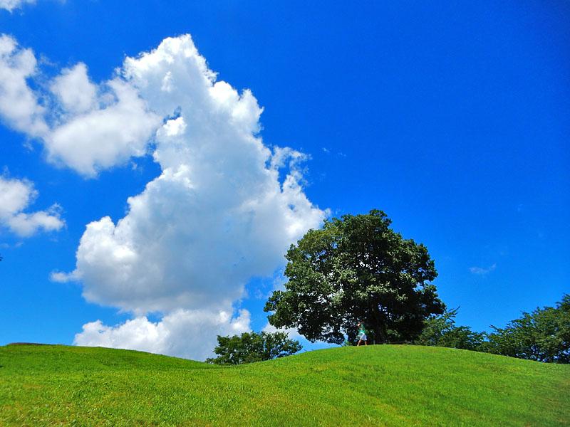 160729榎の丘の夏2