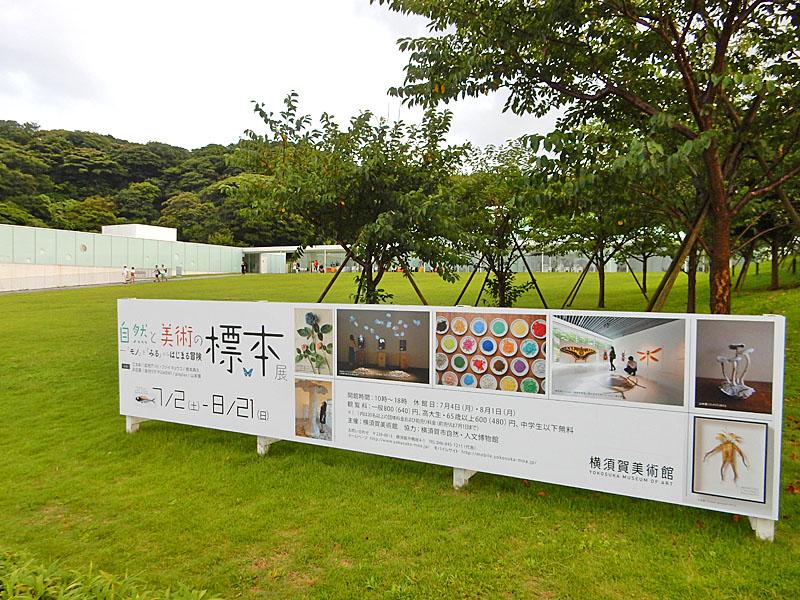 160731横須賀美術館1