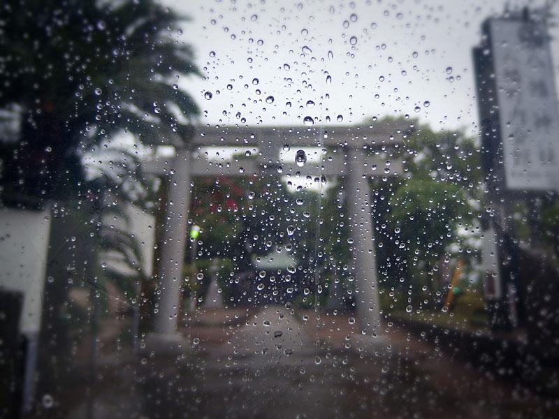 160911雨の日曜日3