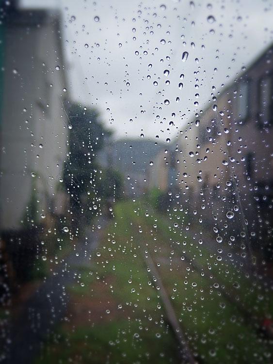 160911雨の日曜日1