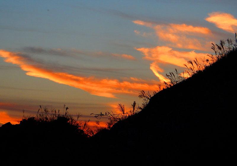 161016城ヶ島のススキと落陽6
