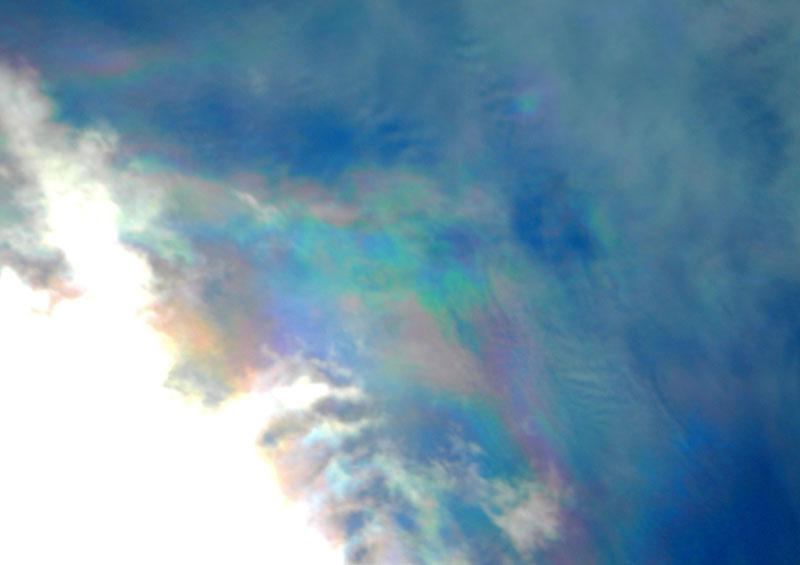 161023今日の彩雲と日暈1