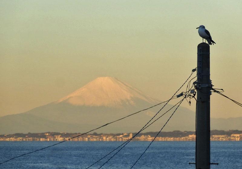 161217東京湾フェリーからの朝富士2