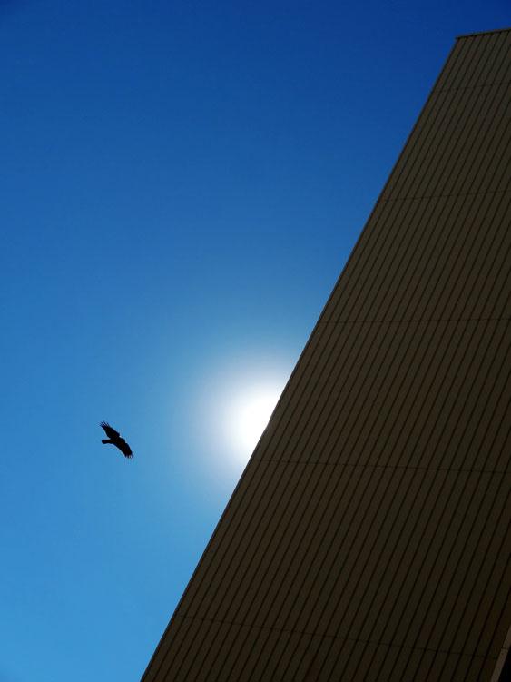 161216冬晴れの青空2
