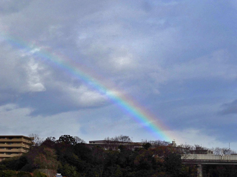 161227今朝の虹