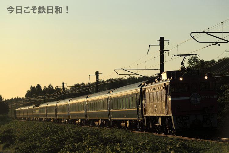 _MG29512.jpg