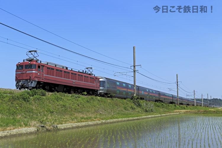 _MG34145.jpg