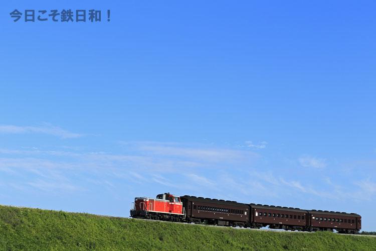 _MG34787.jpg