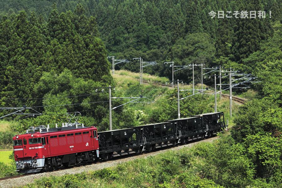 _MG35085.jpg