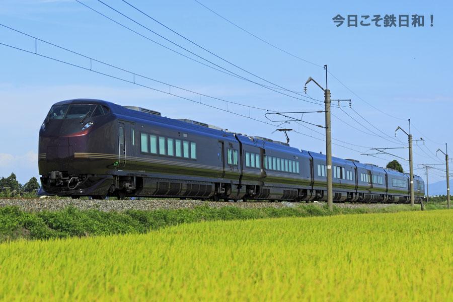 _MG35141.jpg